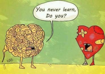 širdis ar protas
